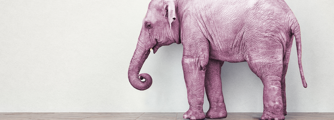 International recruitment – the elephant in the room